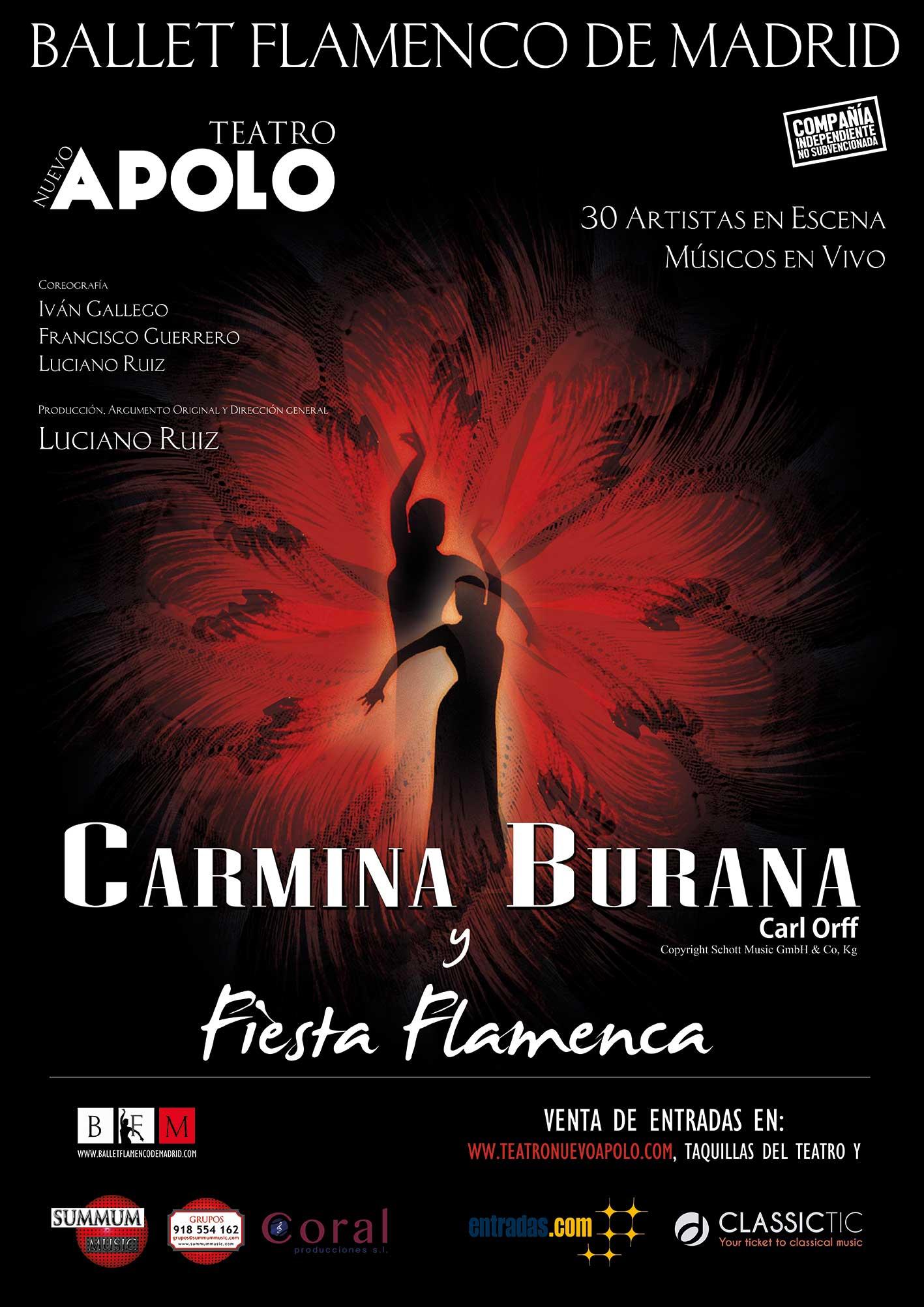 Carmina y fiesta flamenca