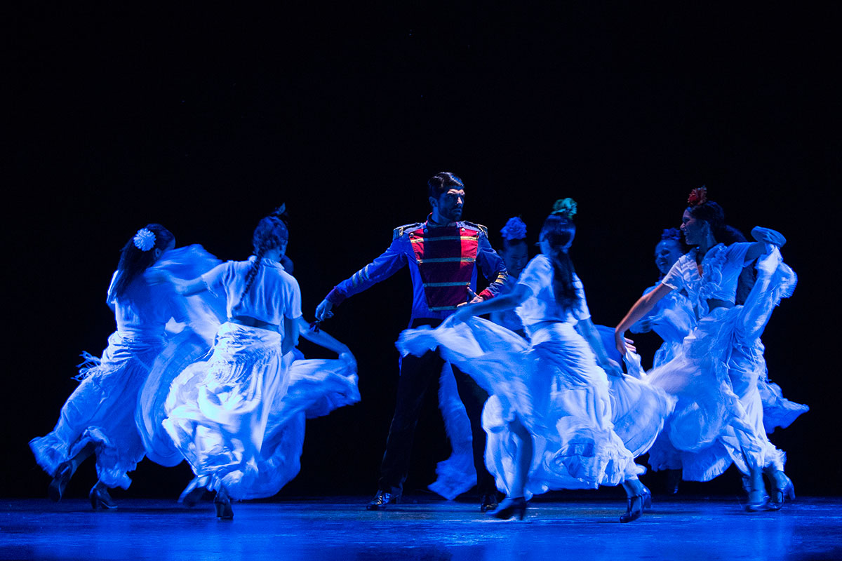Carmen Ballet Flamenco de Madrid