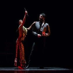 Carmen Ballet Flamenco de Madrid