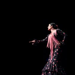 Flamenco Feeling